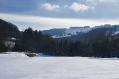 Kammerhof w zimie Obrazy Stock