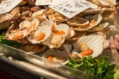 Kammosselen voor verkoop bij de Rialto-vissenmarkt in Venetië, Italië Stock Foto