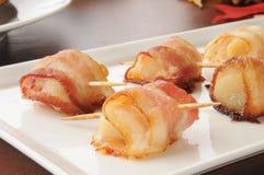 Kammusslor som slås in i bacon Arkivbilder