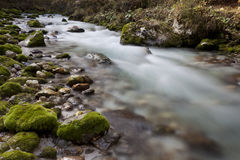 Kamniška bistrica rever before the creek Predasel Royalty Free Stock Photos