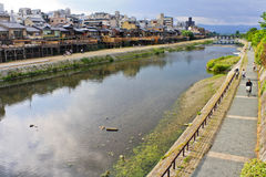 Kamo River. The Kamo River is river that flows through Tokyo. Its riverbanks are popular walking spots for both local and tourists alike. In the summer time, the Royalty Free Stock Photos