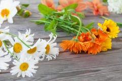 Kamomill, calendula och andra trädgårdblommor för en bukett på en trätabell Arkivfoton