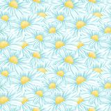 Kamomill eller Daisy Seamless Vector Pattern royaltyfri illustrationer
