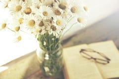 Kamomill och bok Fotografering för Bildbyråer