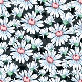 Kamomillblommahand som drar den sömlösa modellen, blom- bakgrund för vektor, blom- broderiprydnad Utdragen knoppvit Arkivbilder