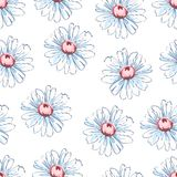 Kamomillblommahand som drar den sömlösa modellen, blom- bakgrund för vektor, blom- broderiprydnad Vita utdragna knoppar Royaltyfria Bilder