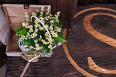 Kamomilldekorsammansättning med böcker och asken på den bruna wood tabellen Royaltyfria Foton