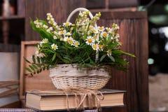 Kamomilldekorsammansättning med böcker och asken på den bruna wood tabellen Royaltyfri Fotografi