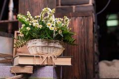 Kamomilldekorsammansättning med böcker och asken på den bruna wood tabellen Fotografering för Bildbyråer