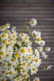 Kamomillen blommar på en träbakgrund Lösa blommor för ny sommar på trätabellen royaltyfria foton