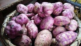Kamote della patata dolce sul bilao Immagine Stock Libera da Diritti
