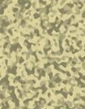 kamouflageöken Arkivbilder