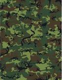 kamouflage Arkivbild