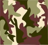 kamouflagemarsklanmilitär Arkivfoton