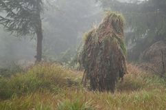 Kamouflerad prickskytt i dimmig skog Royaltyfria Bilder