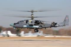 Kamov Ka-52 de l'Armée de l'Air russe décollant à la base aérienne de Kubinka Images libres de droits