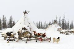 Kamp van nomadische stam in de polaire toendra Stock Foto's