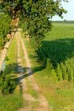 Kampagne und Felder Lizenzfreies Stockbild