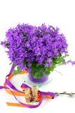 Kampanula, bellflower, szczęśliwy Easter Zdjęcia Stock