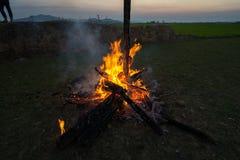 Kampbrand van droge boomboomstam bij zonsondergang Royalty-vrije Stock Fotografie