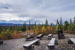 Kamperend in het Nationale park van Denali, die MT Mckinley onder ogen zien stock afbeelding