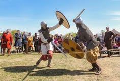 Kampf der alten Wikinger in der Rüstung Lizenzfreie Stockbilder