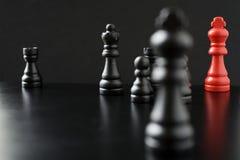Kampf des Schwarzen Lizenzfreies Stockbild