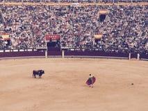Kampf Madrids Spanien Las Vendas Stier Lizenzfreies Stockbild
