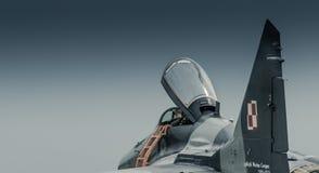 Kampfflugzeug stockfoto