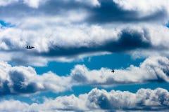 Kampfflugzeug und der Vogel auf dem Hintergrund des bewölkten Himmels Lizenzfreie Stockfotografie