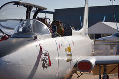Kampfflugzeugprofil Lizenzfreie Stockbilder