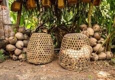 Kampfhähne in den Bambuskäfigen, Bali, Indonesien stockbilder