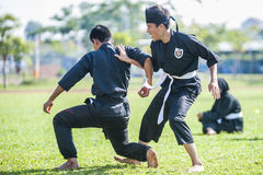 Kampfkunst-Demonstration lizenzfreie stockfotos