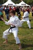 Kampfkunst-Demonstration Stockfotos