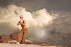 Kampfkunst-Hintergrund Stockfotos