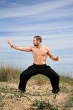 Kampfkunstausbilder stockbilder