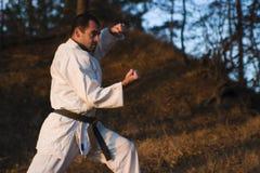 Kampfkunstausbildung Lizenzfreies Stockfoto