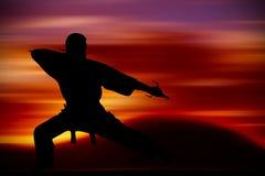 Kampfkunstausbildung Stockfotografie