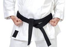 Kampfkunsthaltung stockbilder