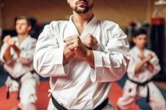 Kampfkunstkämpfer ziehen ihre Fähigkeiten ab lizenzfreie stockfotografie