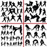 Kampfkunstmischungsschattenbild Stockfotografie