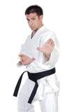Kampfkunstposition stockbilder