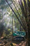 Kampieren im Freien in Thailand lizenzfreies stockfoto