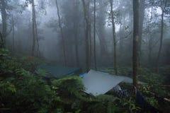 Kampieren im Regenwald mit Nebel stockfotos
