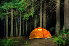 Kampieren im Wald lizenzfreie stockfotos