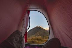 Kampieren mit Zelt auf den Alpen Ansicht vom Zeltinnenraum bei Sonnenaufgang, Körperteil Abenteuer und Erforschung, Tätigkeit im  Lizenzfreies Stockfoto