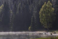 Kampieren am nebeligen See in Siebenbürgen Lizenzfreie Stockfotos