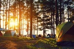 Kampieren und Zelt unter dem Kiefernwald im Sonnenuntergang bei nördlich Tha Lizenzfreies Stockbild