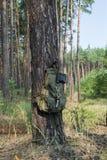 Kampierende Ausrüstung am Rand eines Kiefernwaldes Lizenzfreies Stockfoto