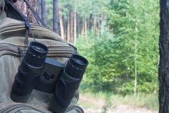 Kampierende Ausrüstung am Rand eines Kiefernwaldes Stockfotografie